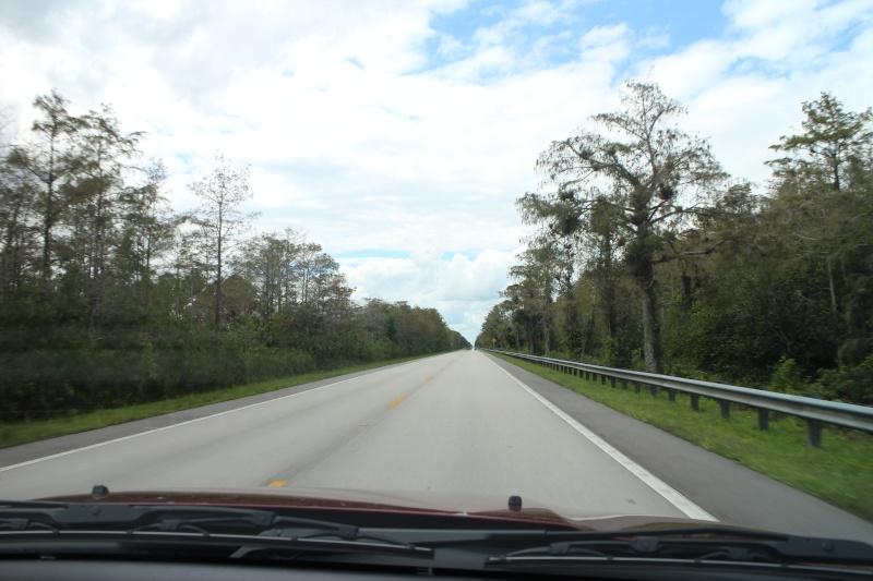 Road Trip Floridien : Le rêve de 2 soeurs - Du 4 au 21 Octobre 2015 (MAJ : 21/05/2017) - TR Terminé - Page 6 Img_3916