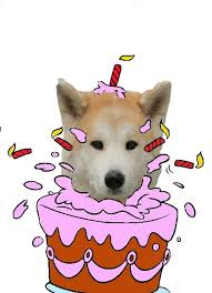 Bon anniversaire Nuzeya  Annive10