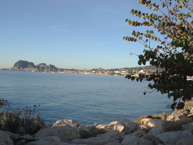 balades en Provence - Page 3 Dsc01412