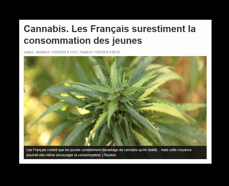 Cannabis. Les Français surestiment la consommation des jeunes  8810