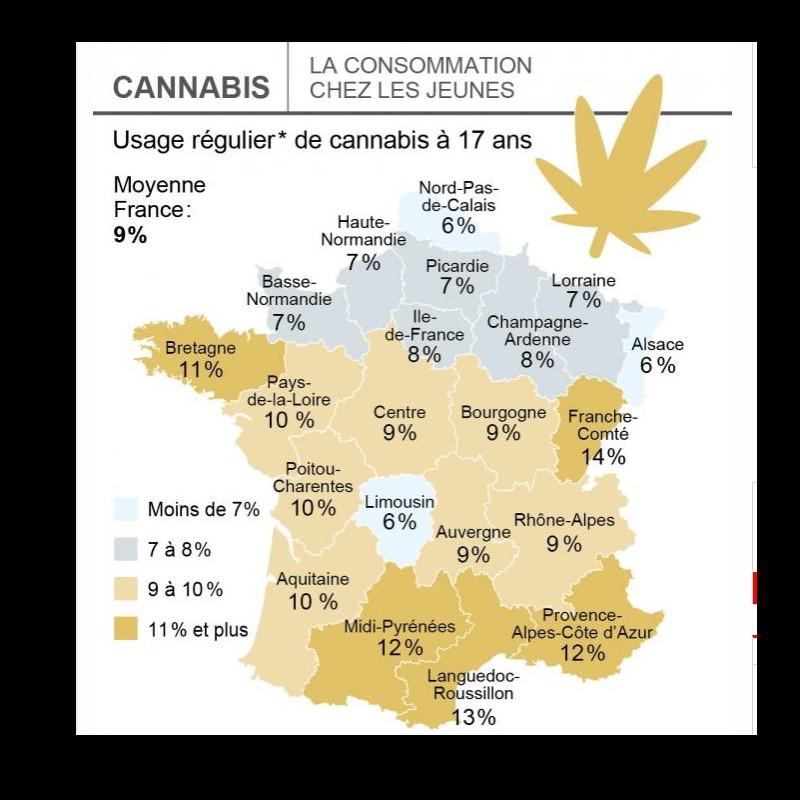 Cannabis. Les Français surestiment la consommation des jeunes  8811