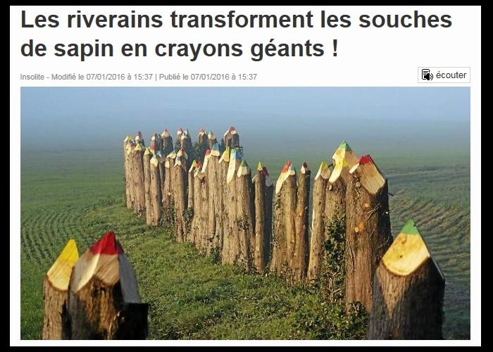 Les riverains transforment les souches de sapin en crayons géants !  Sans_418