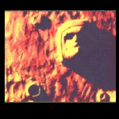 Mars : Mais Pourquoi Ils Nous Mentent ? Sans_585