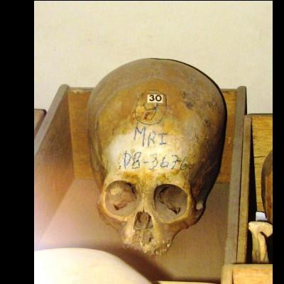 L'analyse ADN des crânes de Paracas prouve qu'ils ne sont pas Humains Sans_789