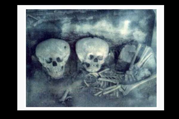 L'analyse ADN des crânes de Paracas prouve qu'ils ne sont pas Humains Sans_790
