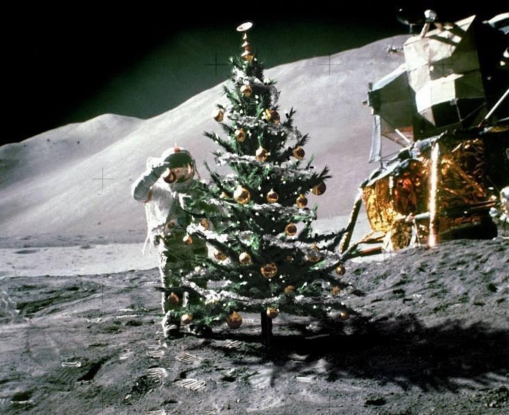 Merry Christmas guys!! 13936110