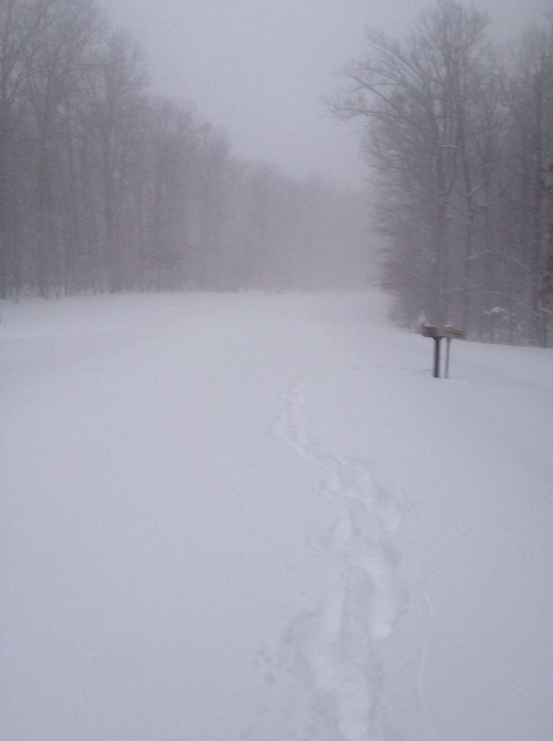 Holy snow Batman!  - Page 3 Street10
