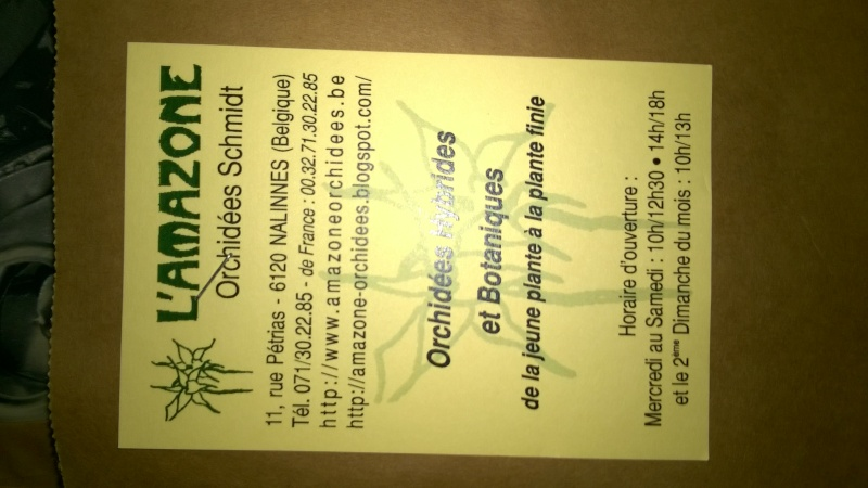 Salon de l'Orchidée à Vervins (02) Wp_20123