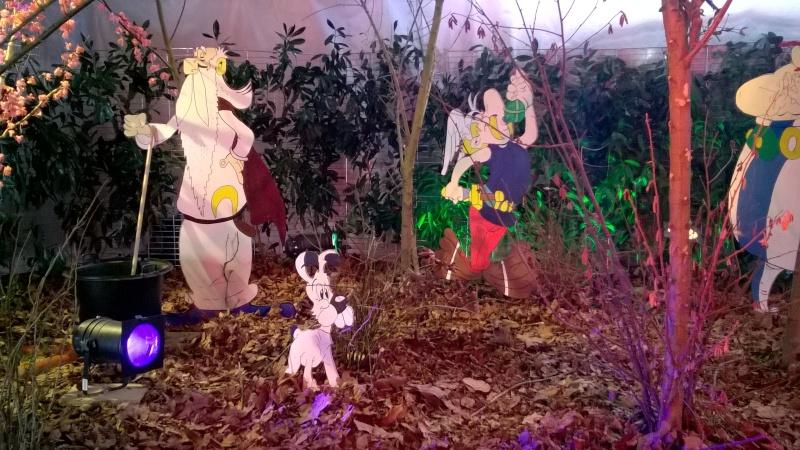 Salon de l'Orchidée à Vervins (02) Wp_20126