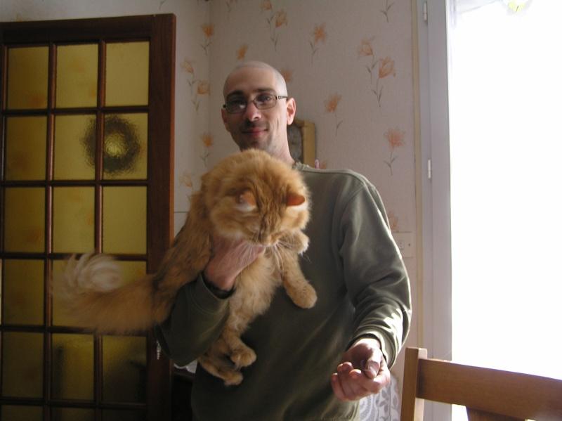 Des chats , encore des chats ^^ P1010014