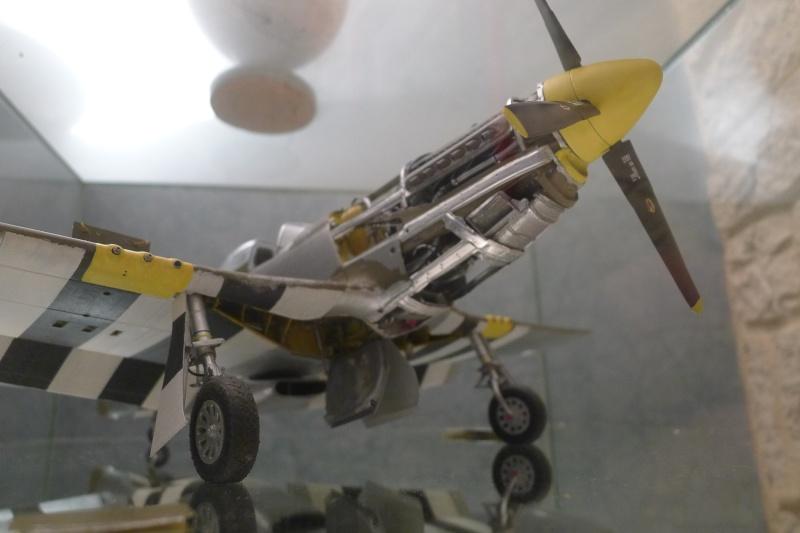 P 51 et FW 190 P1000011