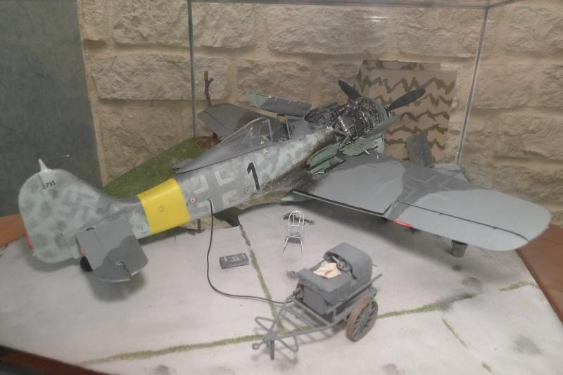 P 51 et FW 190 P1000012