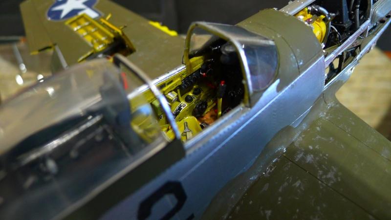 P 51 et FW 190 P1000814