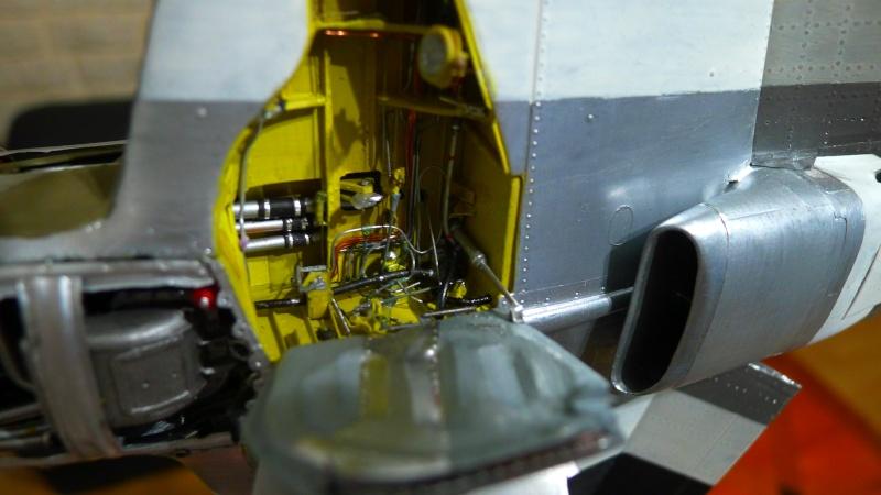 P 51 et FW 190 P1000818