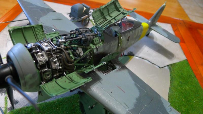 P 51 et FW 190 P1000821