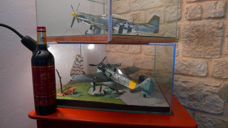 P 51 et FW 190 P1000825
