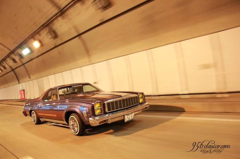 1970's & 1980's Low riders - Page 3 12247010
