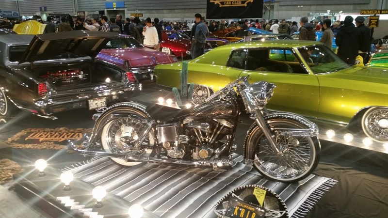 Diggers & Low Riders Choppers 12341011