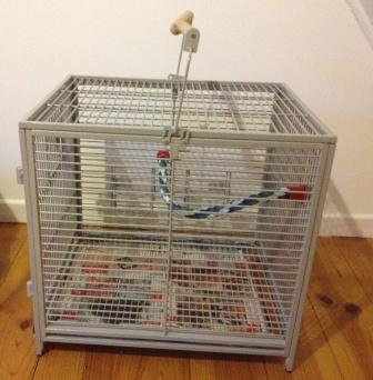 A vendre Cage de transport  Photo_10