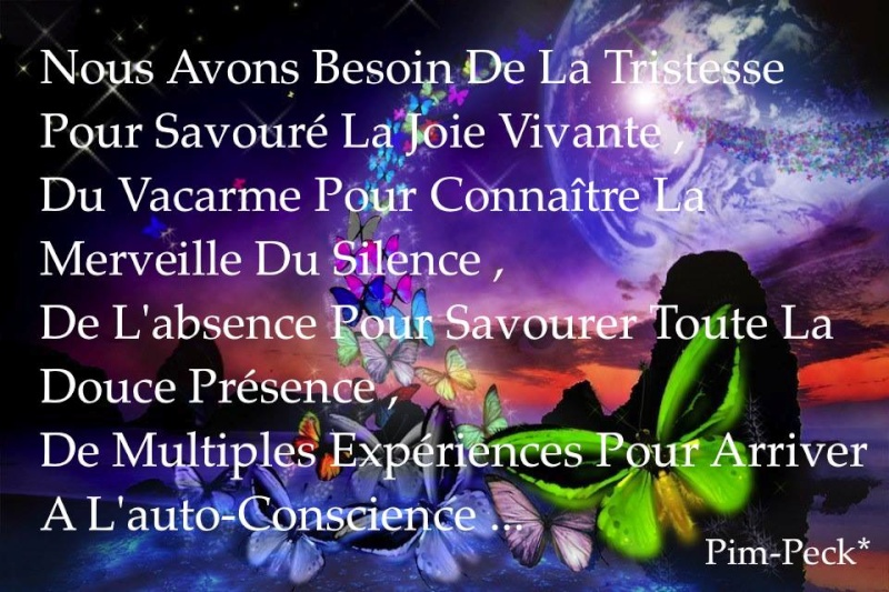 Citations que nous aimons - Page 5 11058210