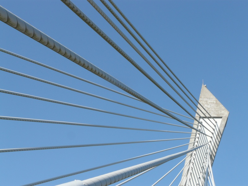 Première mondiale : 2011, le pont à haubans et tablier courbe de Térénez P1540615