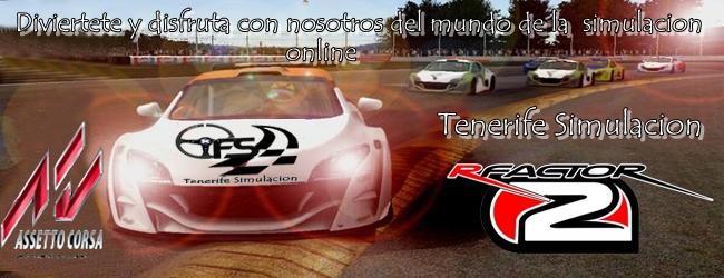TFS            Tenerife Simulacion