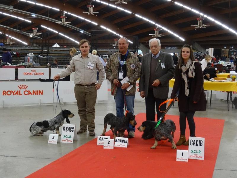Photos exposition canine Perpignan Dsc01816