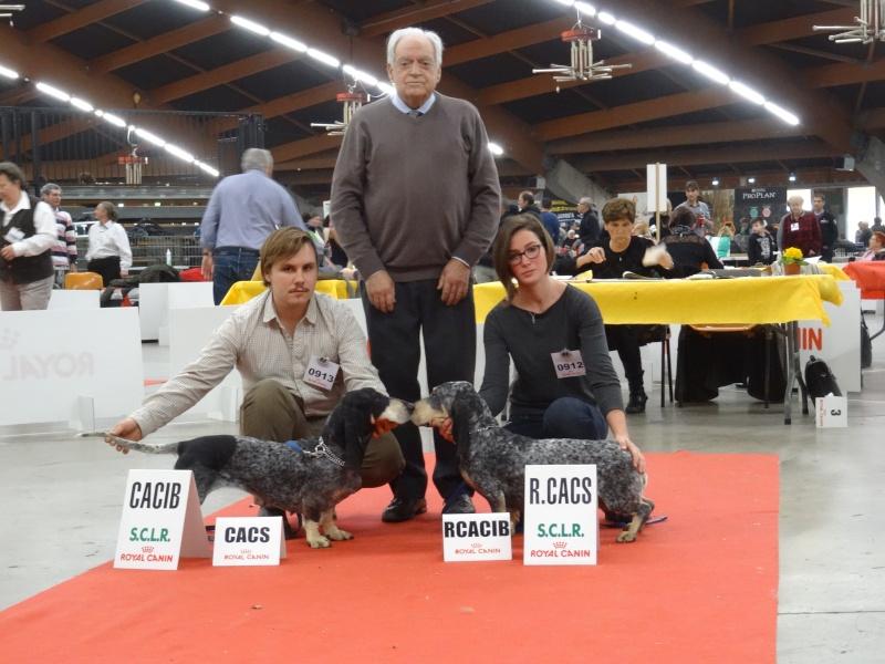 Photos exposition canine Perpignan Dsc01819