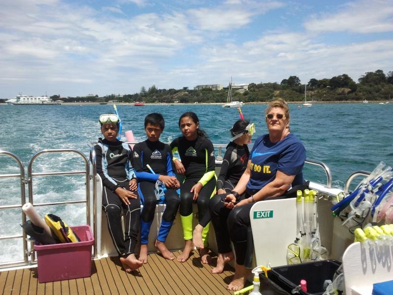 Dolphin swim on Moonraker 2015-123