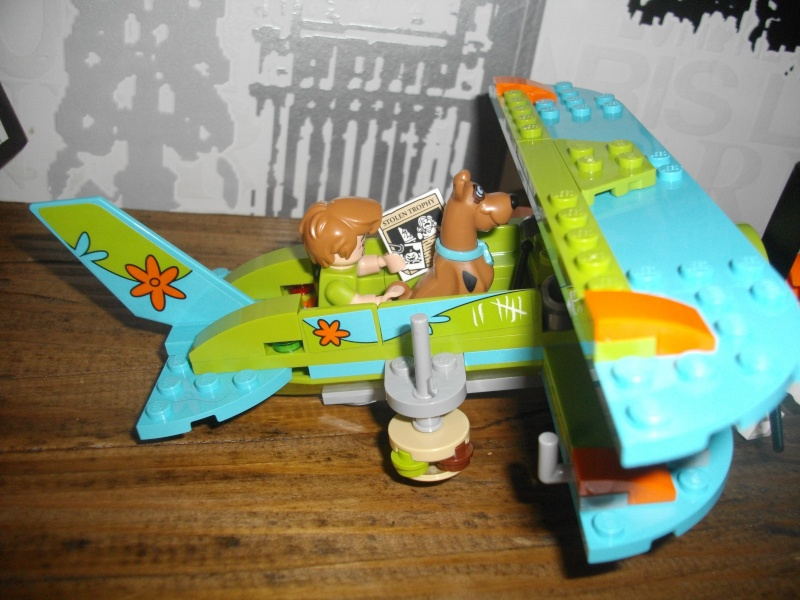 [LEGO] Licence Scooby Doo - Page 2 Imgp4018