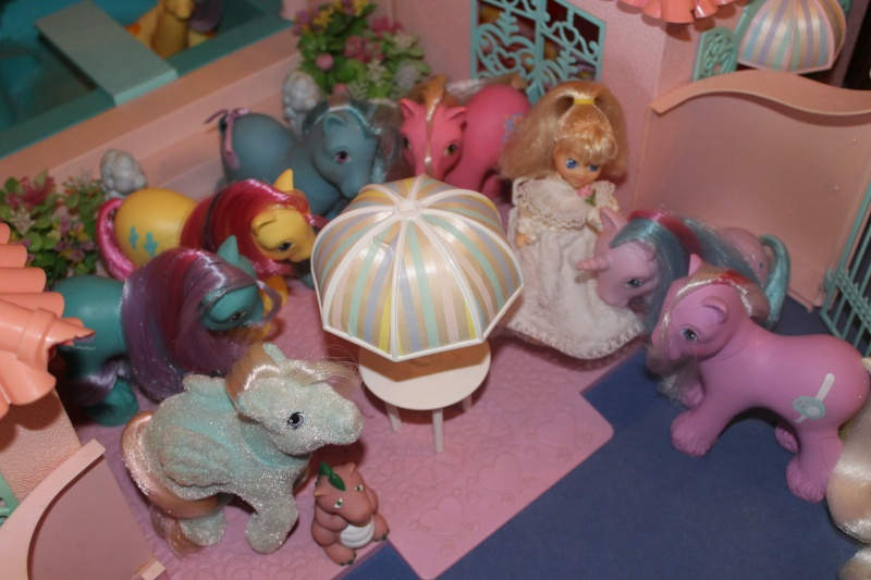 Ma pony collection <3 - Sifflebiz - Page 3 Img_1913