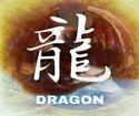Die Drachenreiter (Nyra Jagd) Drache10