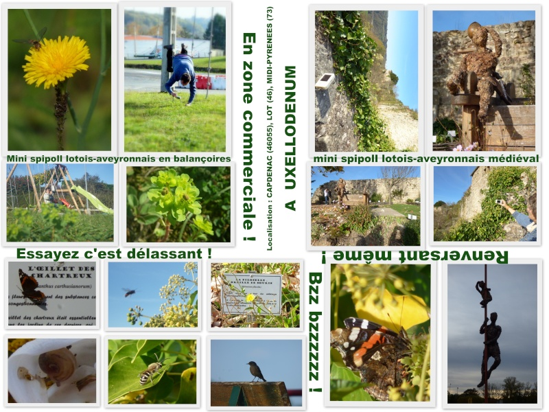 Récidive de mini rencontre Aveyron - Lot  Mini_s11