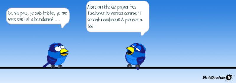 Les Birds - Page 13 14494310