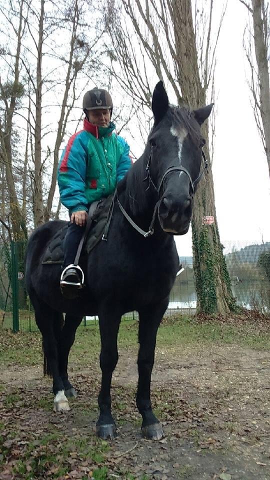 Lancelot          Lancel10