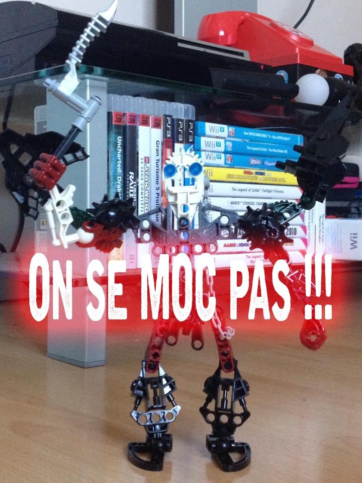 [Fans-Arts] Les Memes Bionifigs - Page 13 Moc_0110