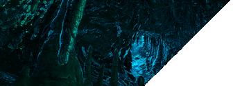 Grottes, récifs et épaves