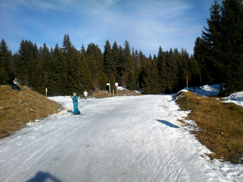 Manque de neige dans les stations de ski hiver 2015/2016 - Page 2 Foret_18
