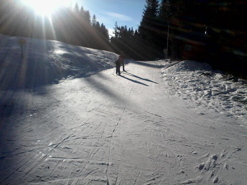 Manque de neige dans les stations de ski hiver 2015/2016 - Page 2 Foret_20
