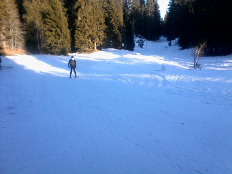 Manque de neige dans les stations de ski hiver 2015/2016 - Page 2 Foret_29