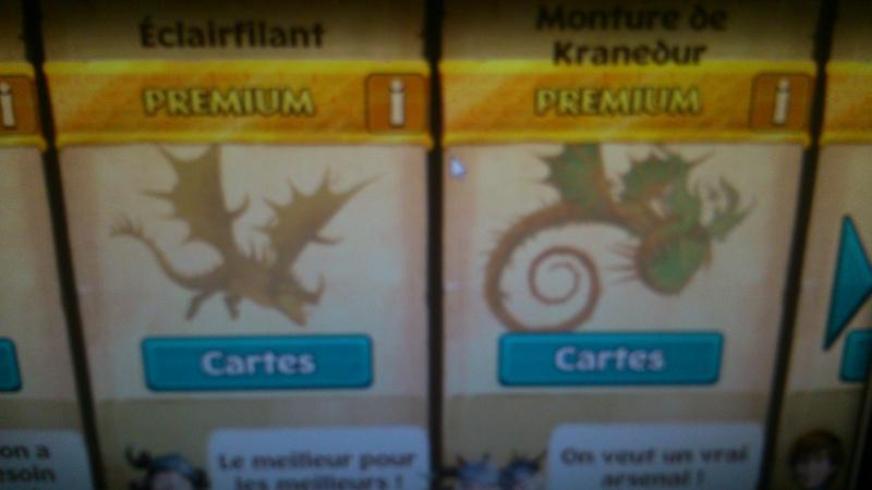 Nouveaux dragons pour nos héros dragonniers? Dsc_0012