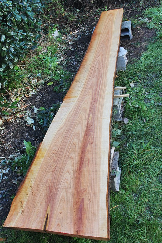 [expérimentation] séchage du bois au micro onde 13_dyc10
