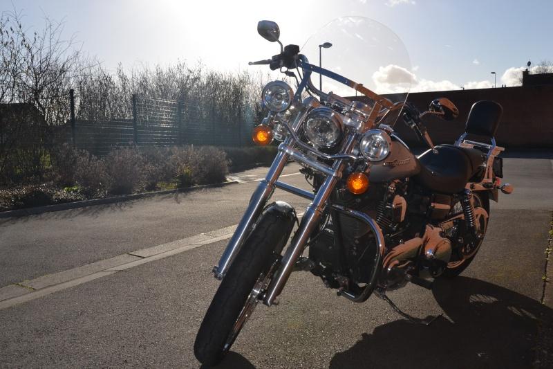 DYNA SUPER GLIDE  combien sommes nous sur Passion-Harley - Page 2 Dsc_4614