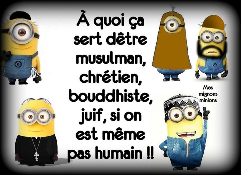 humour - Page 5 12227110