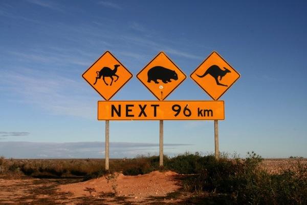 L'Australie [Voyage] Austra10