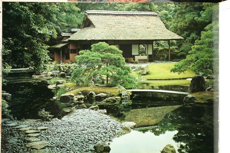 Projet fortin japonais Photo_20
