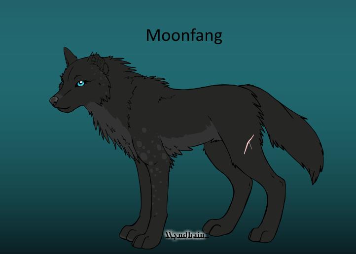 Black wolf rp Moonfa10