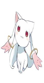 Mitwi