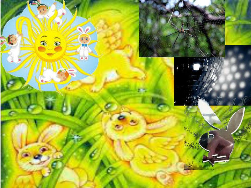 Солнечный зайчик Eiaz10