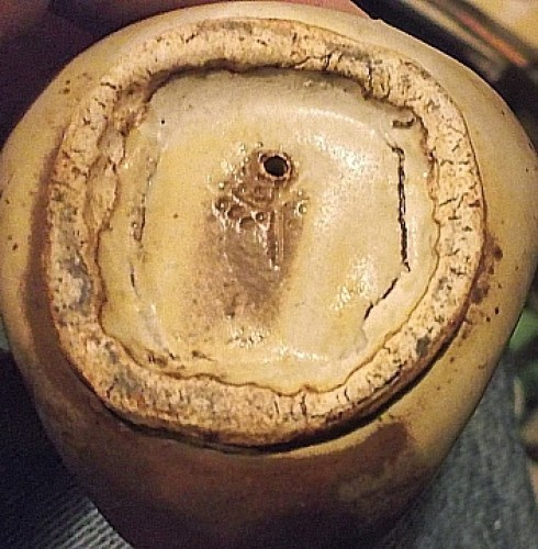 incised clay item with tree mark Waterm66